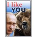 Dekoratiivsed tuletikud, Putin, I Like You